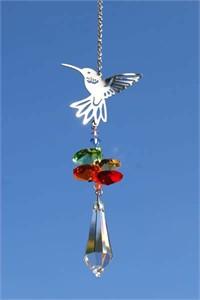 Hummingbird with Icicle