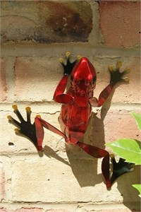 Red Frog Wall Art