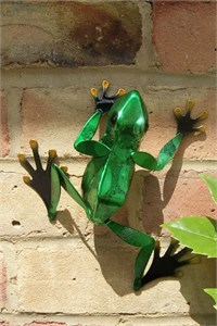 Green Frog Wall Art