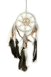 Hopi Dream Catcher, White