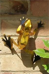 Yellow Frog Wall Art