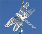 Dragonfly with Clear Icicle