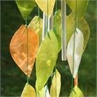 Capiz Leaf Chime, green